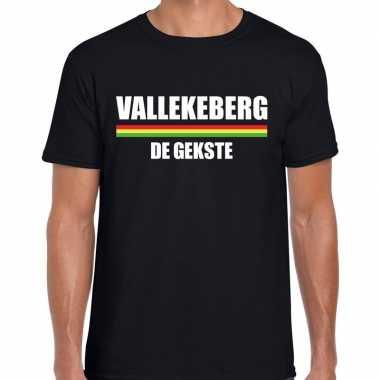 Carnaval vallekeberg gekste t shirt zwart heren2020
