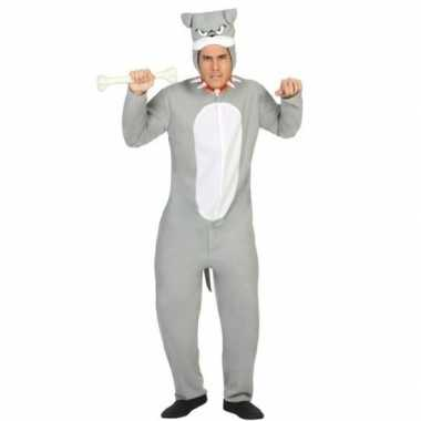 Dierencarnavalskleding pit bull hond verkleed carnavalskleding grijs