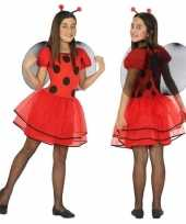 Dierencarnavalskleding lieveheersbeestje verkleed jurk jurkje meisjes